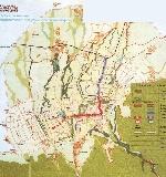 Зимняя кампания 1941—1942 годов